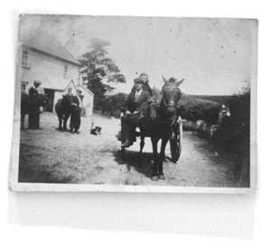horse-and-cart_1